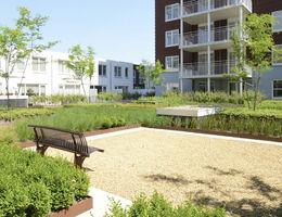 öffentlichen grünen Dachgarten