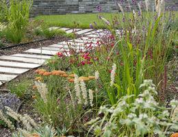 Farbenfroher Dachgarten