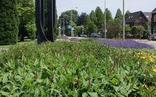 Rijksweg Swalmen na aanleg Green to Colour