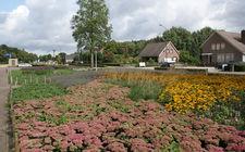 Onderhoudsarm plantsoen Boxmeer - september 2013