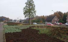 Onderhoudsarm plantsoen Boxmeer - november 2013