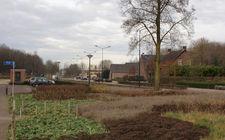 Onderhoudsarm plantsoen Boxmeer - december 2013