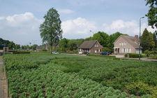 Onderhoudsarm plantsoen Boxmeer - april 2014