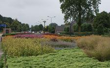 Onderhoudsarm plantsoen Boxmeer - juli 2014