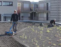 Neues Rathaus wasserdicht