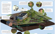 Gemeinde Bergen ergreift umweltfreundliche Maßnahmen mit Wadi und biodiverser Bepflanzung